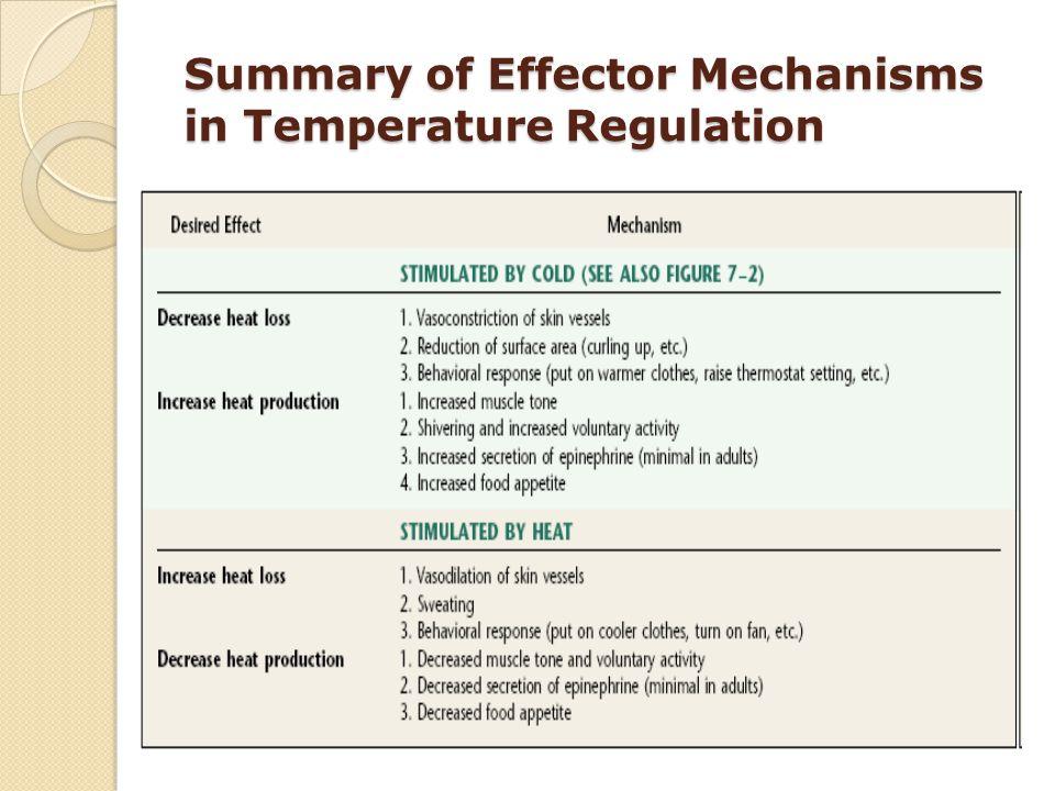 Summary of Effector Mechanisms in Temperature Regulation