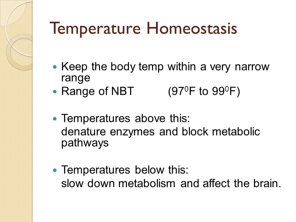 Temperature Homeostasis Keep the body temp within a very narrow range Range of NBT (97 0 F to 99 0 F) Temperatures above this: denature enzymes and bl