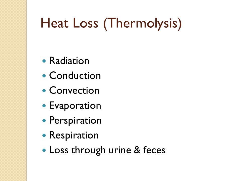 Heat Loss (Thermolysis) Radiation Conduction Convection Evaporation Perspiration Respiration Loss through urine & feces