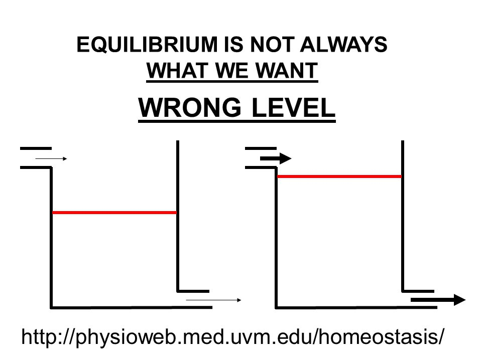 WRONG LEVEL EQUILIBRIUM IS NOT ALWAYS WHAT WE WANT http://physioweb.med.uvm.edu/homeostasis/