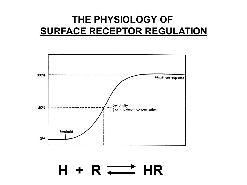 H + R HR THE PHYSIOLOGY OF SURFACE RECEPTOR REGULATION