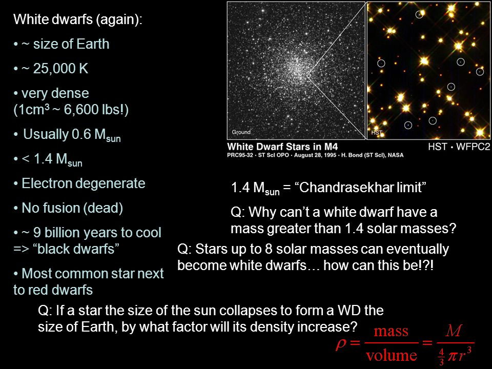 White dwarfs (again): ~ size of Earth ~ 25,000 K very dense (1cm 3 ~ 6,600 lbs!) Usually 0.6 M sun < 1.4 M sun Electron degenerate No fusion (dead) ~ 9 billion years to cool => black dwarfs Most common star next to red dwarfs 1.4 M sun = Chandrasekhar limit Q: Why can't a white dwarf have a mass greater than 1.4 solar masses.