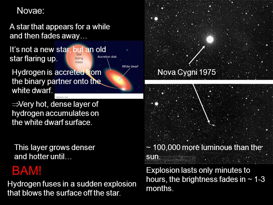 Novae: A star that appears for a while and then fades away… It's not a new star, but an old star flaring up.