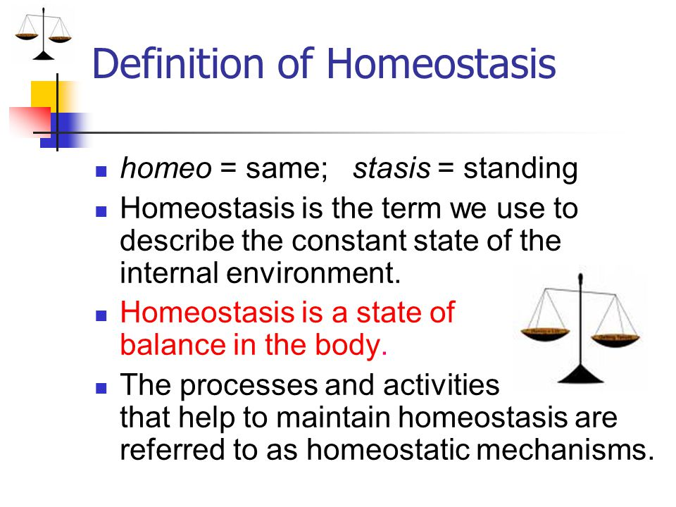 Homeostasis A state of balance in the body Whoa Notes