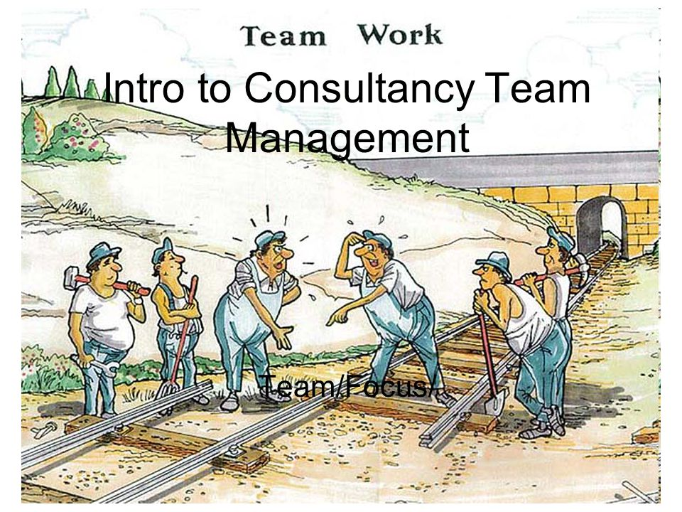 Intro to Consultancy Team Management Team/Focus/