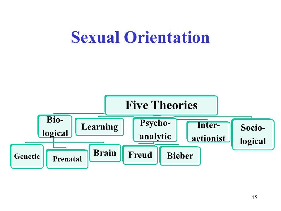 Sexual Orientation 45