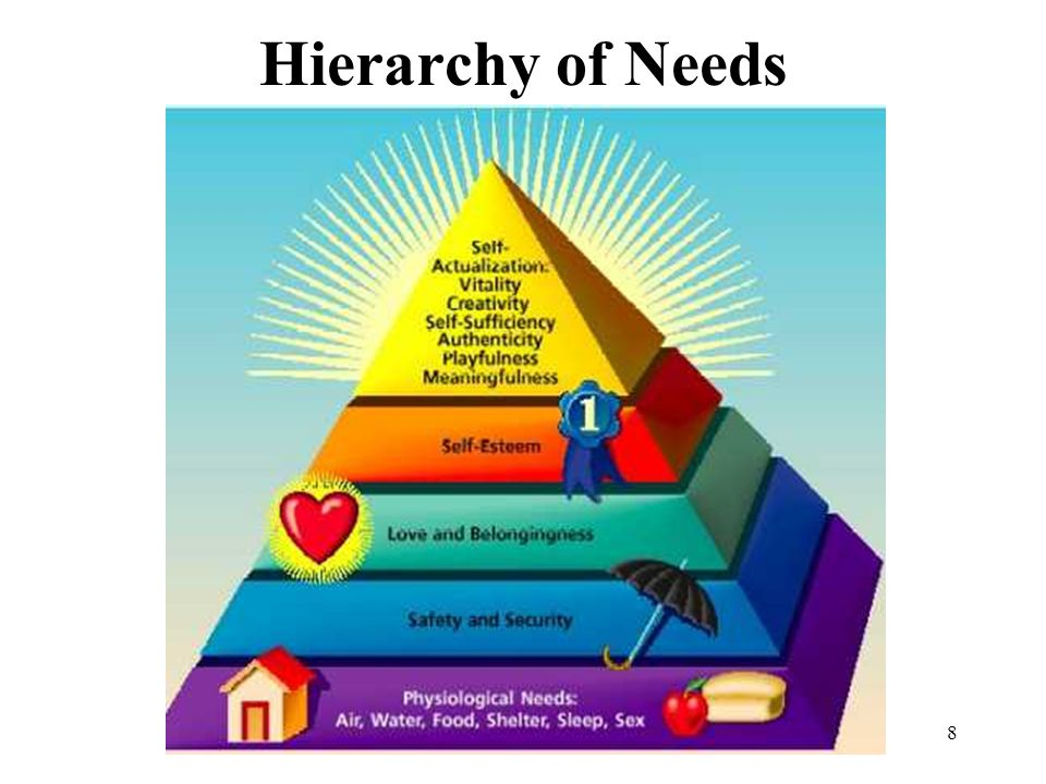 Hierarchy of Needs 8