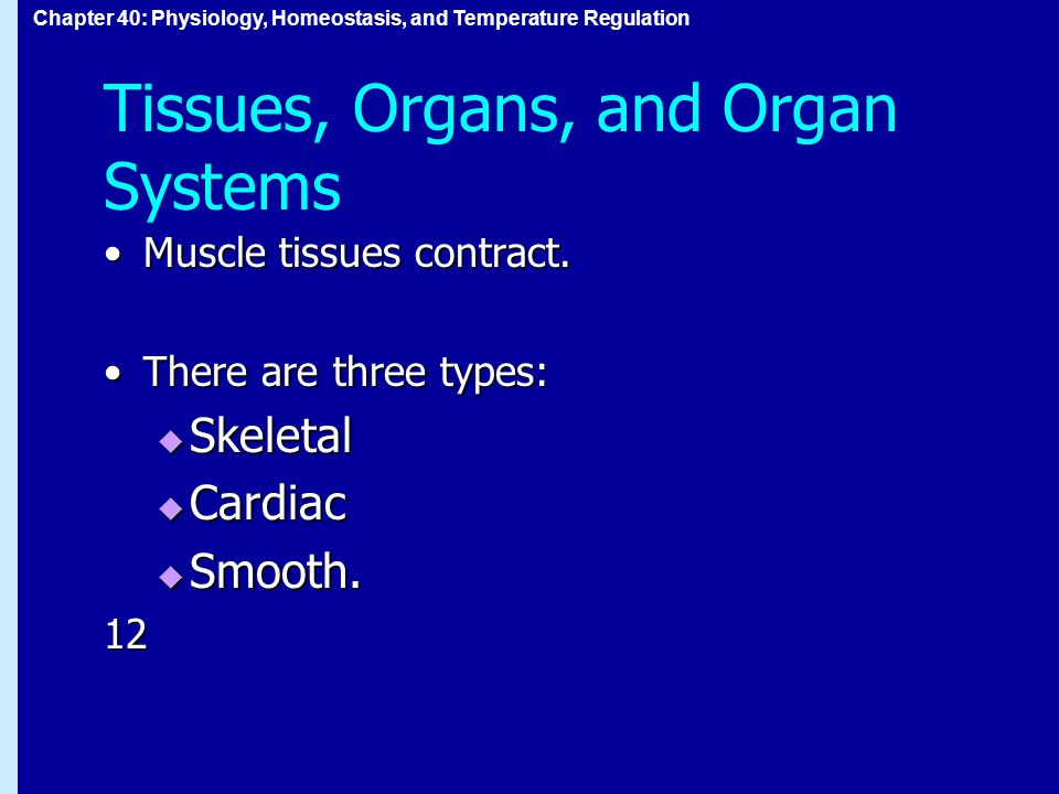 Chapter 40: Physiology, Homeostasis, and Temperature Regulation Tissues, Organs, and Organ Systems Muscle tissues contract.Muscle tissues contract.