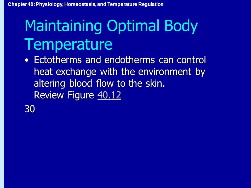 Chapter 40: Physiology, Homeostasis, and Temperature Regulation Maintaining Optimal Body Temperature Ectotherms and endotherms can control heat exchange with the environment by altering blood flow to the skin.