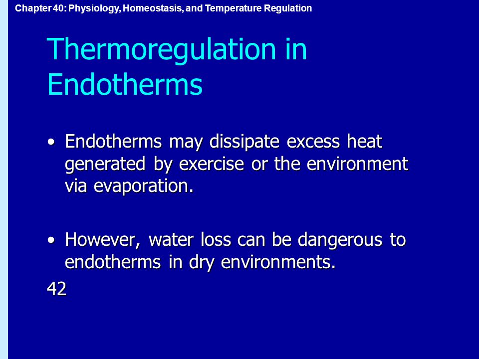 Chapter 40: Physiology, Homeostasis, and Temperature Regulation Thermoregulation in Endotherms Endotherms may dissipate excess heat generated by exercise or the environment via evaporation.Endotherms may dissipate excess heat generated by exercise or the environment via evaporation.