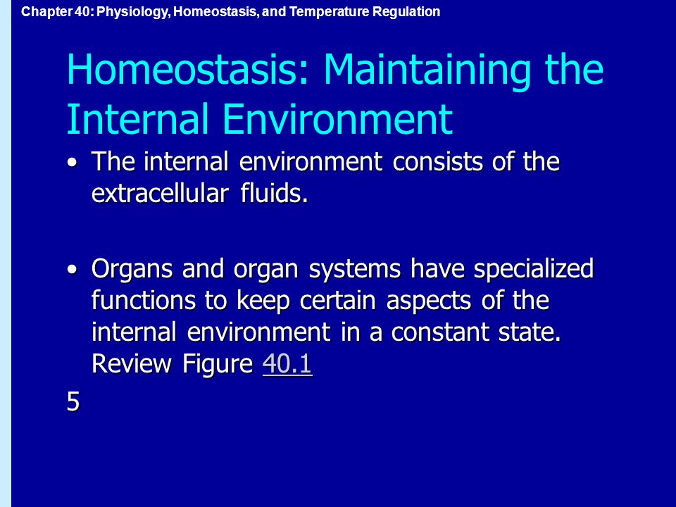 Chapter 40: Physiology, Homeostasis, and Temperature Regulation Homeostasis: Maintaining the Internal Environment The internal environment consists of the extracellular fluids.The internal environment consists of the extracellular fluids.