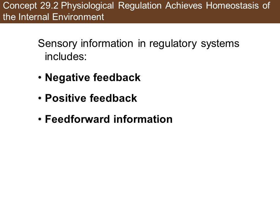 Concept 29.2 Physiological Regulation Achieves Homeostasis of the Internal Environment Sensory information in regulatory systems includes: Negative feedback Positive feedback Feedforward information