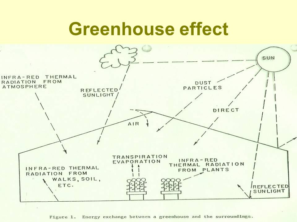 B.Temperature in greenhouse determined by: 1.