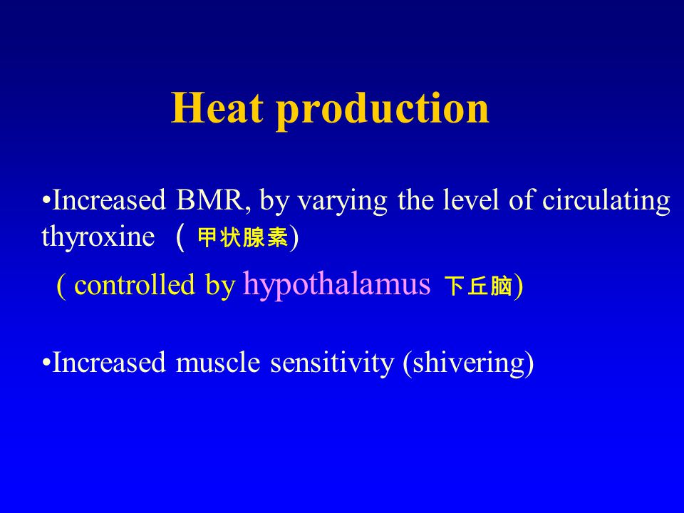 Heat production Increased BMR, by varying the level of circulating thyroxine ( 甲状腺素 ) ( controlled by hypothalamus 下丘脑 ) Increased muscle sensitivity (shivering)
