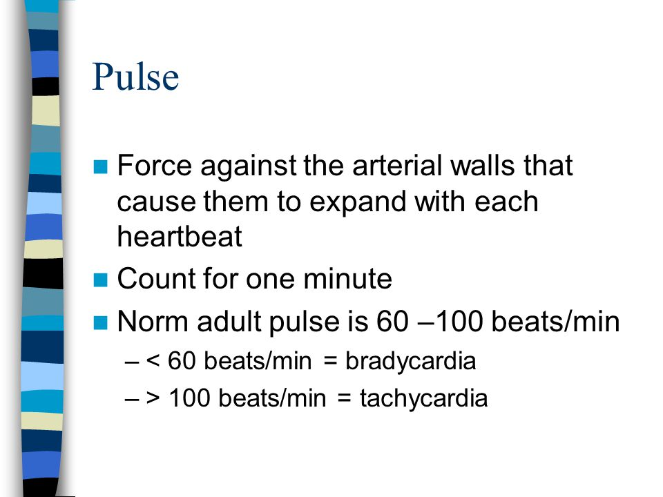 Pulse Force against the arterial walls that cause them to expand with each heartbeat Count for one minute Norm adult pulse is 60 –100 beats/min –< 60 beats/min = bradycardia –> 100 beats/min = tachycardia