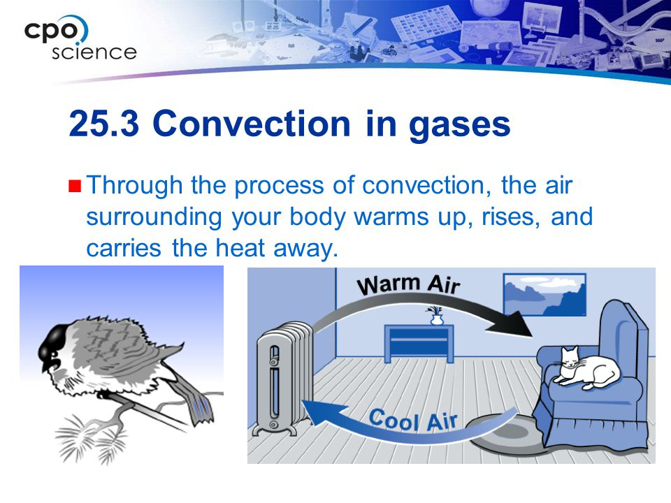 25.3 Convection in gases Through the process of convection, the air surrounding your body warms up, rises, and carries the heat away.