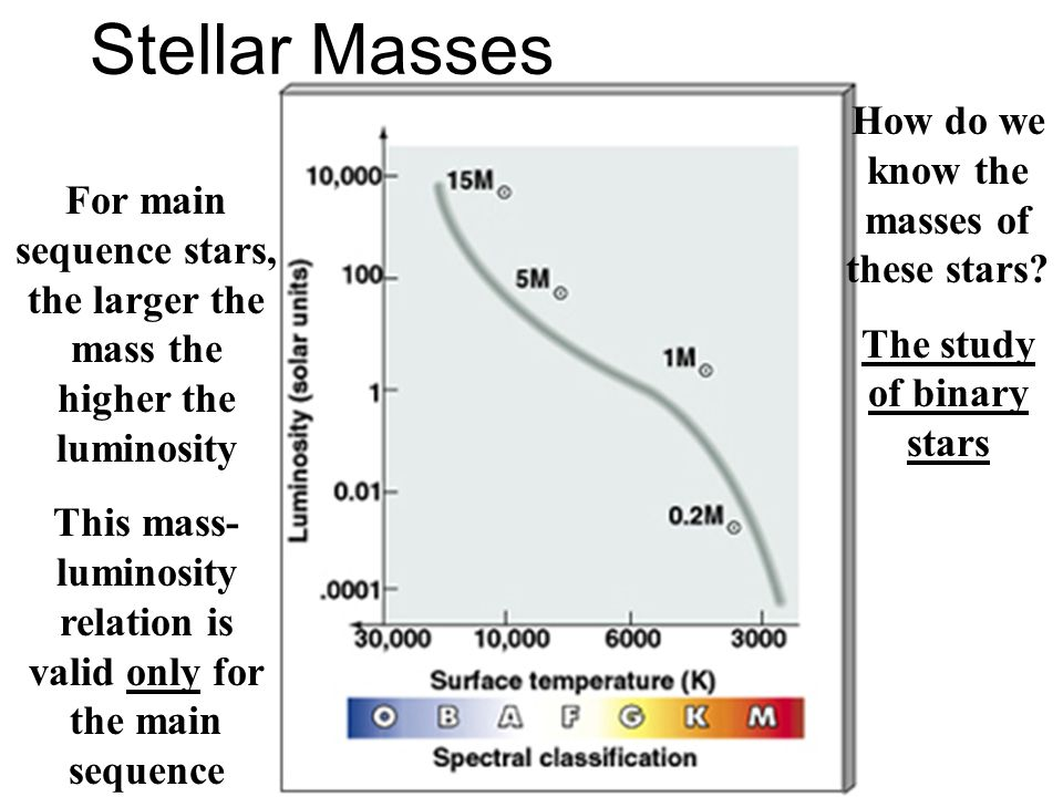 Stellar Masses For main sequence stars, the larger the mass the higher the luminosity This mass- luminosity relation is valid only for the main sequen