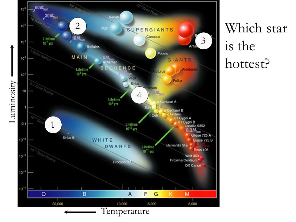 Temperature Luminosity Which star is the hottest? 1 2 3 4