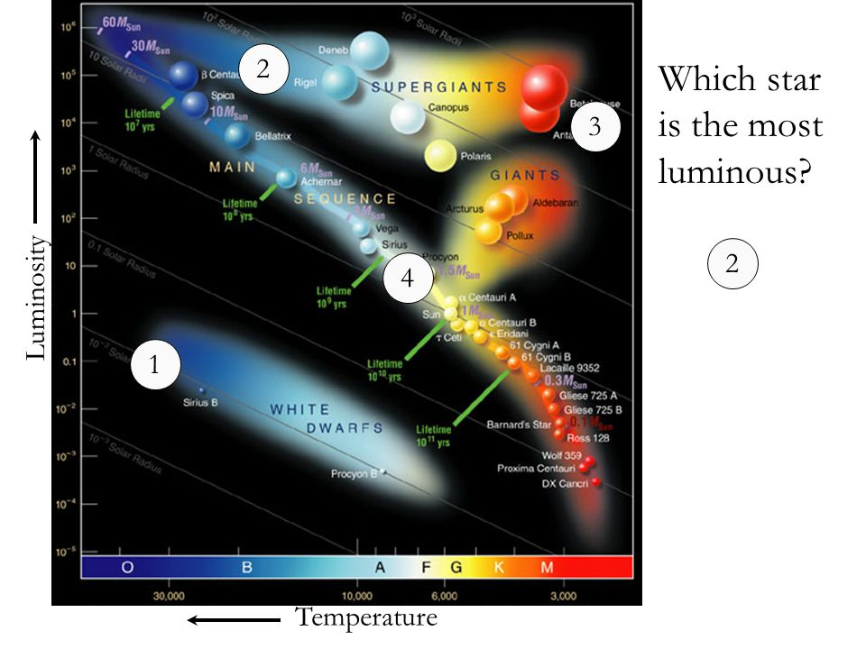 Temperature Luminosity Which star is the most luminous? 1 2 3 4 2