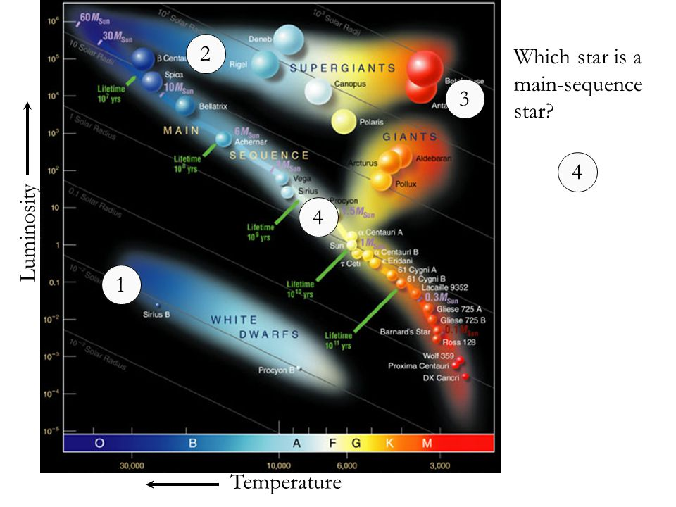 Temperature Luminosity Which star is a main-sequence star? 1 2 3 4 4