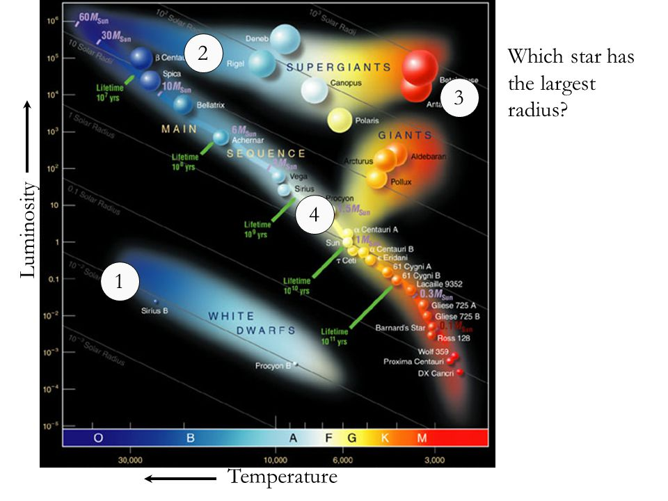 Temperature Luminosity Which star has the largest radius? 1 2 3 4
