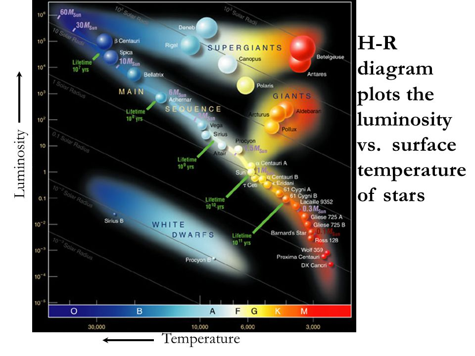 Main- sequence turnoff point of a cluster tells us its age