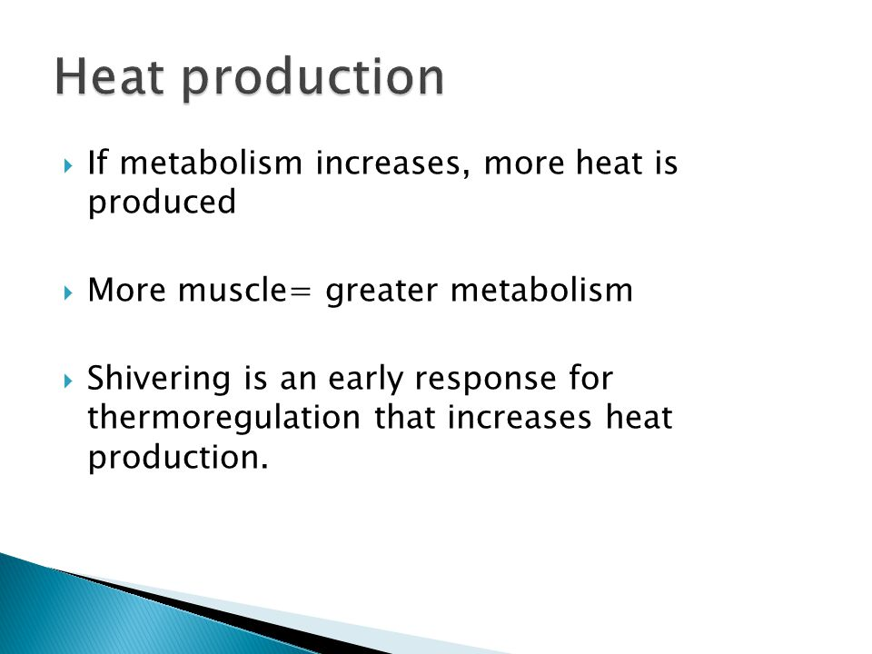  If metabolism increases, more heat is produced  More muscle= greater metabolism  Shivering is an early response for thermoregulation that increases heat production.