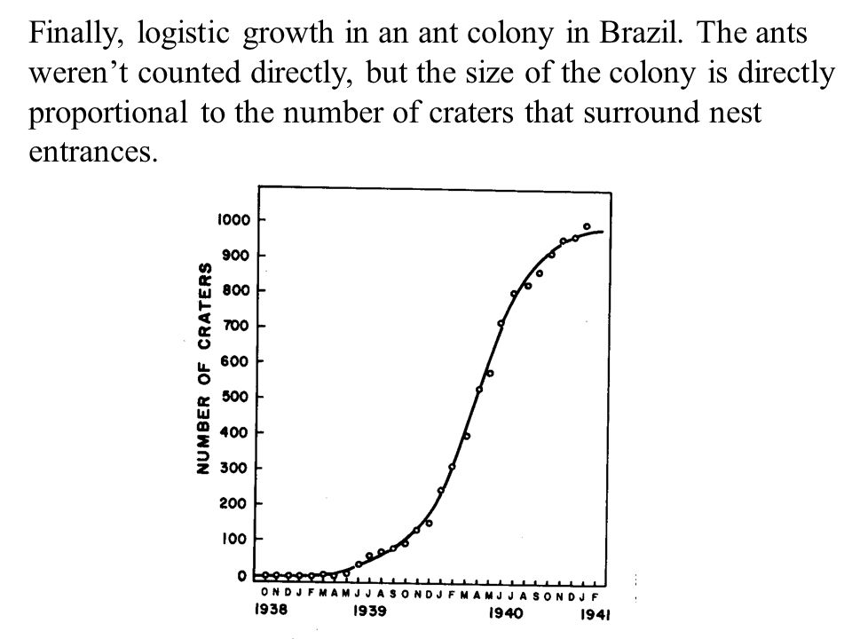 Finally, logistic growth in an ant colony in Brazil. The ants weren't counted directly, but the size of the colony is directly proportional to the num