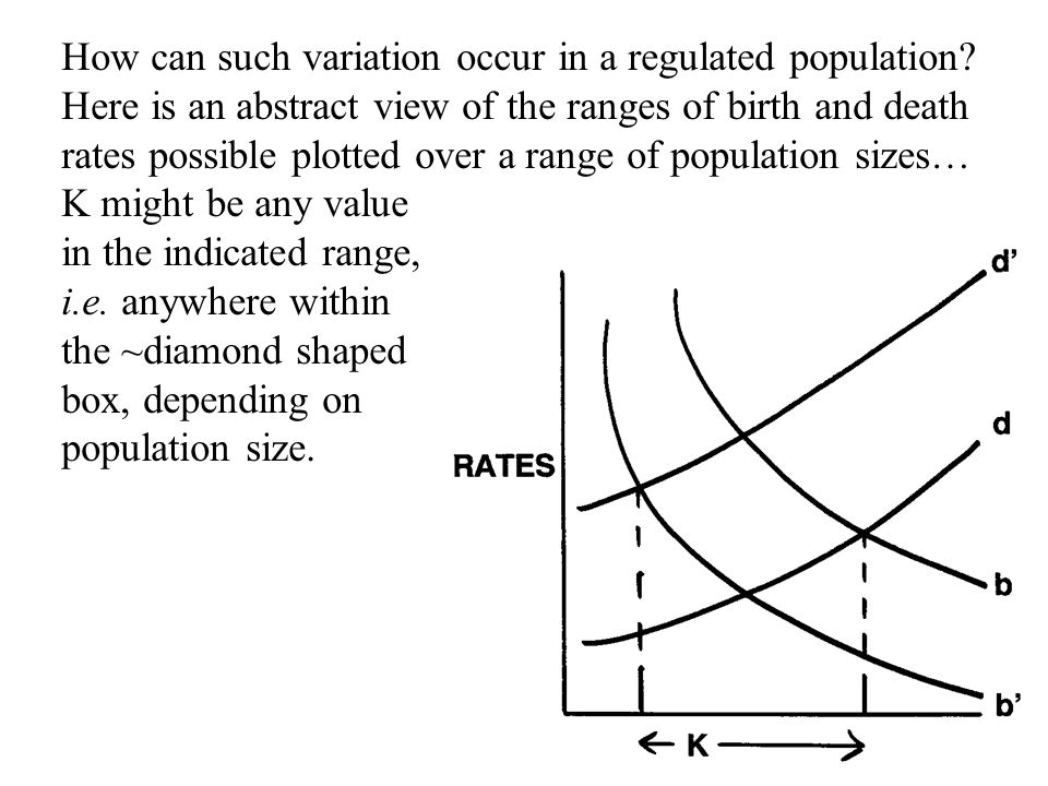 How can such variation occur in a regulated population? Here is an abstract view of the ranges of birth and death rates possible plotted over a range