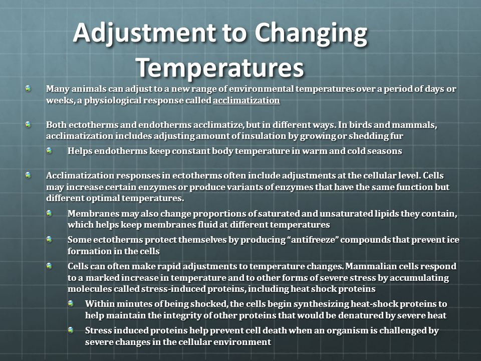 Adjustment to Changing Temperatures Many animals can adjust to a new range of environmental temperatures over a period of days or weeks, a physiologic