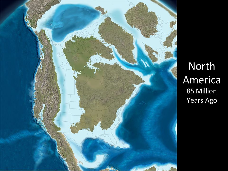 North America 85 Million Years Ago