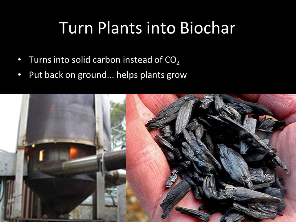 Turn Plants into Biochar Turns into solid carbon instead of CO 2 Put back on ground...