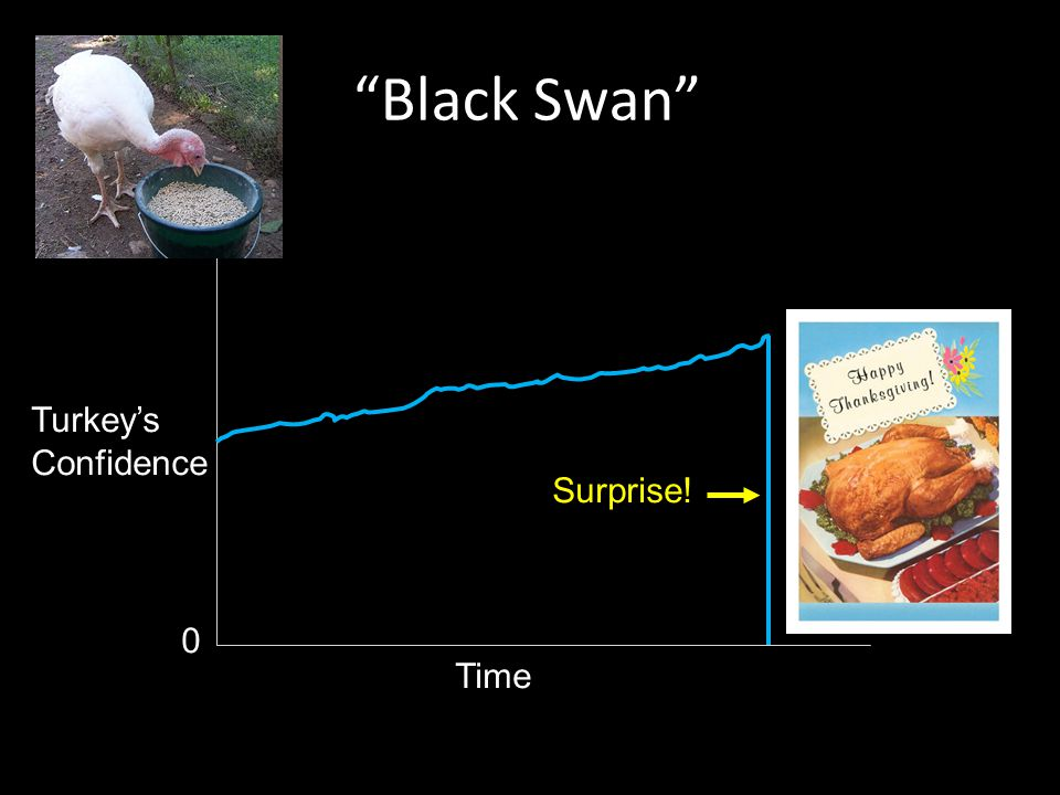 Black Swan Time Turkey's Confidence Surprise! 0