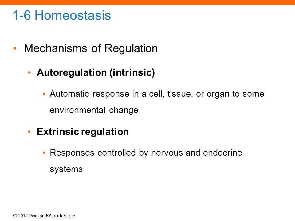 © 2012 Pearson Education, Inc. 1-6 Homeostasis Mechanisms of Regulation Autoregulation (intrinsic) Automatic response in a cell, tissue, or organ to s