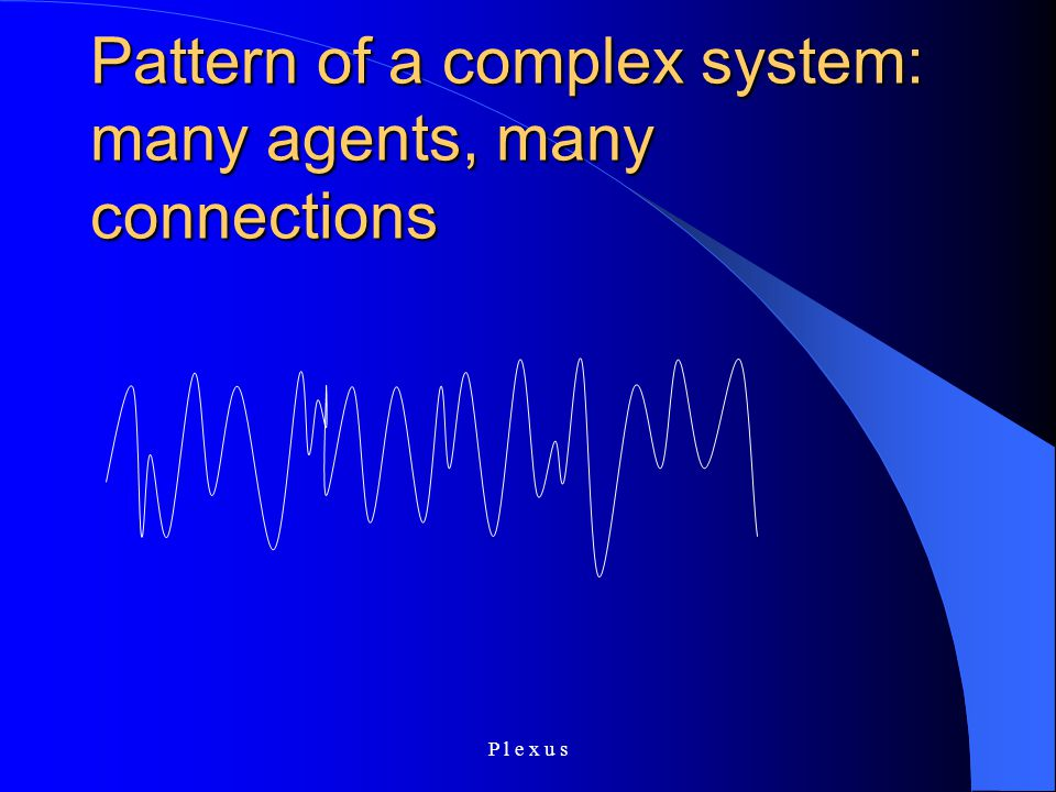 P l e x u s Pattern of a complex system: many agents, many connections