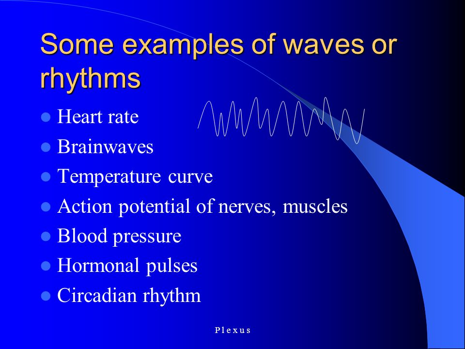 P l e x u s Some examples of waves or rhythms Heart rate Brainwaves Temperature curve Action potential of nerves, muscles Blood pressure Hormonal pulses Circadian rhythm
