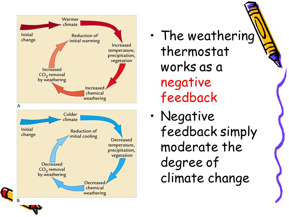 The weathering thermostat works as a negative feedback Negative feedback simply moderate the degree of climate change