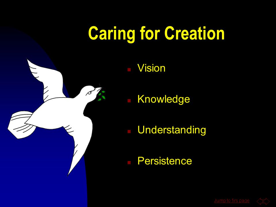 Scripture n If you want to know me, look to my creation n How do we treat creation
