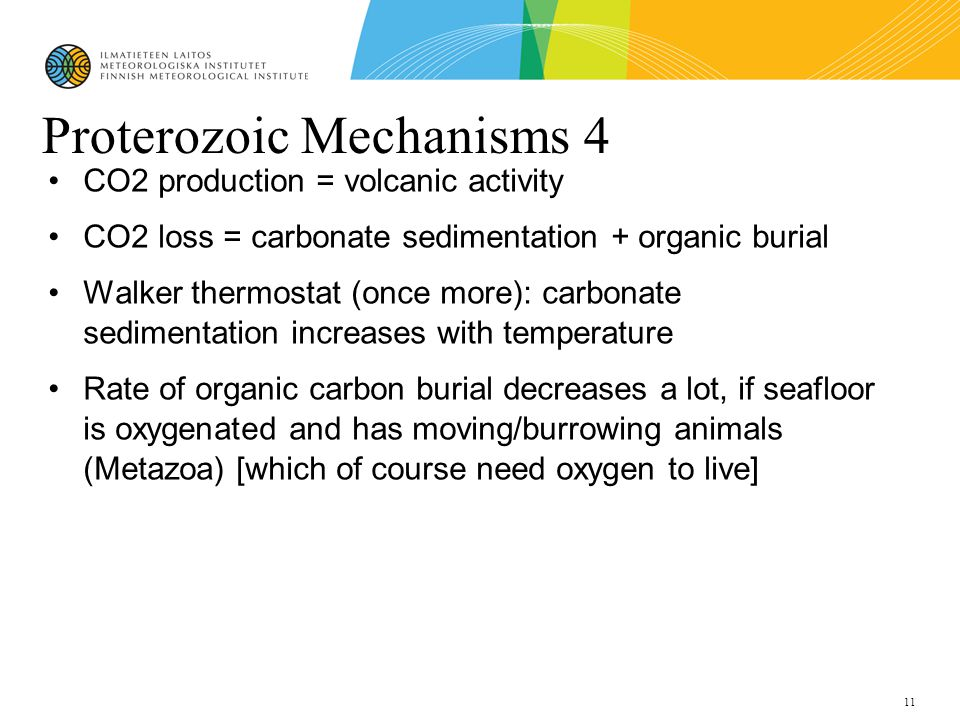 11 Proterozoic Mechanisms 4 CO2 production = volcanic activity CO2 loss = carbonate sedimentation + organic burial Walker thermostat (once more): carbonate sedimentation increases with temperature Rate of organic carbon burial decreases a lot, if seafloor is oxygenated and has moving/burrowing animals (Metazoa) [which of course need oxygen to live]
