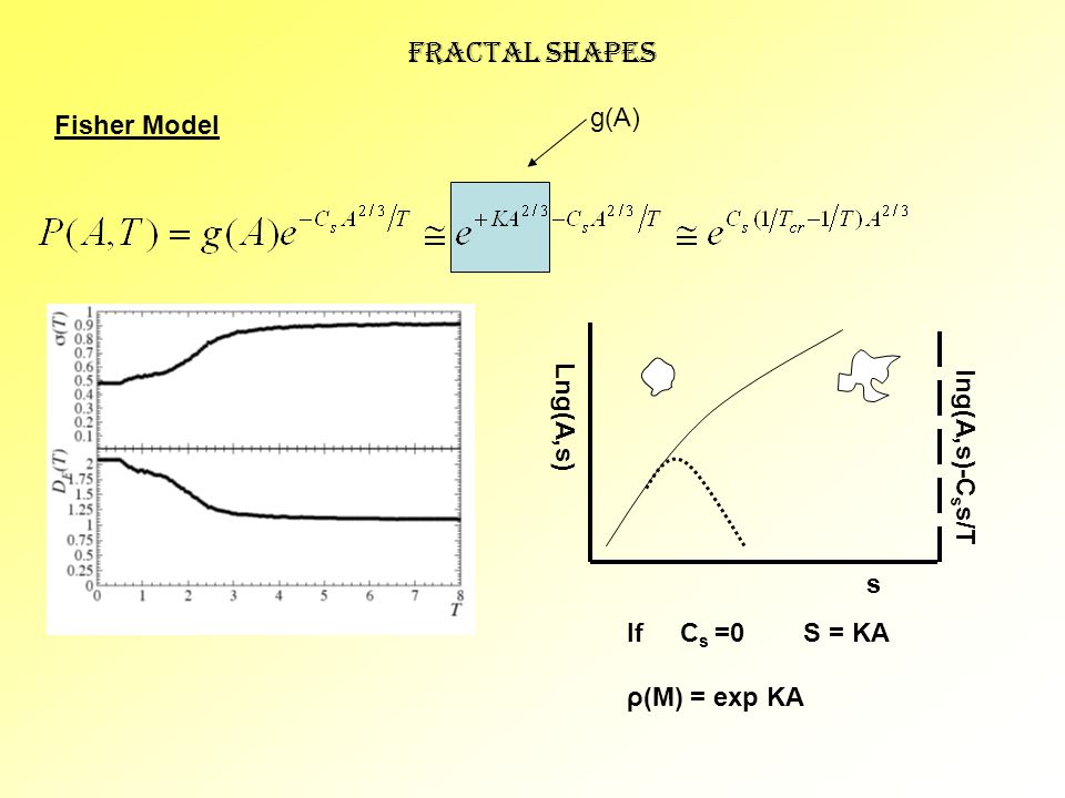 Fractal Shapes Fisher Model g(A) lng(A,s)-C s s/T Lng(A,s) s If C s =0 S = KA ρ(M) = exp KA