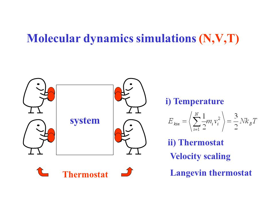 Molecular dynamics simulations (N,V,T) i) Temperature ii) Thermostat Velocity scaling Langevin thermostat system Thermostat