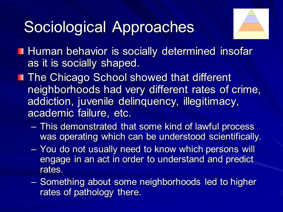 Implications of different rates The different rates highlighted the basic insight of sociology, that human behavior is socially shaped.