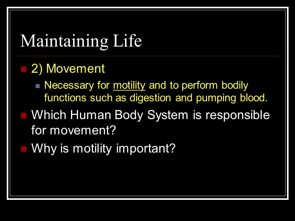 Maintaining Life- stuff we have to do 1) Maintaining Boundaries Organisms must keep their insides separate from the outside Which Human Body System maintains this essential boundary.