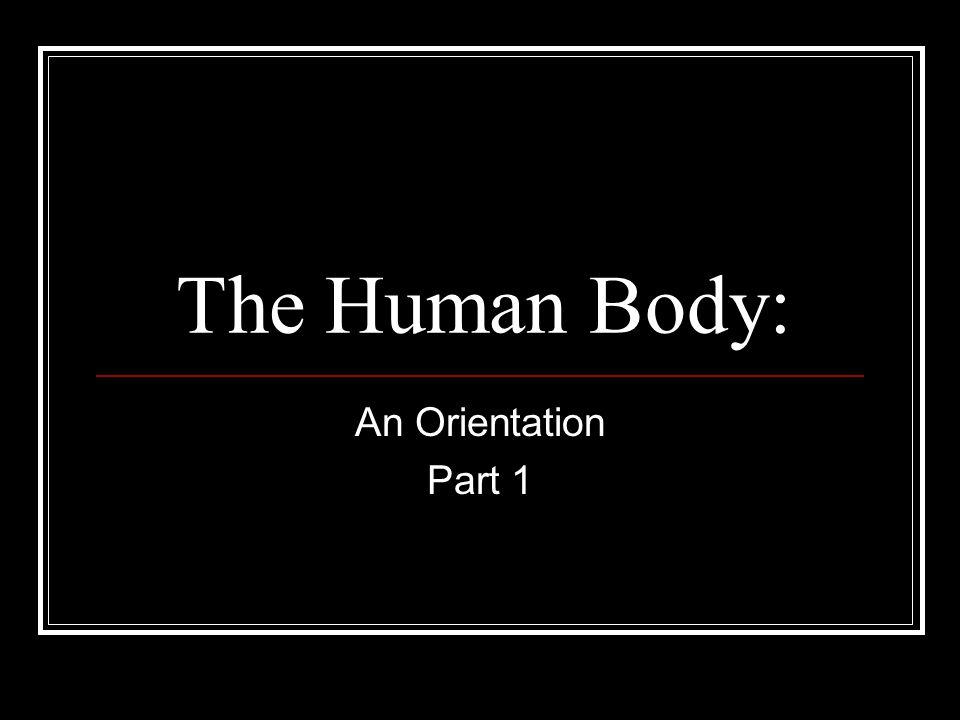 The Human Body: An Orientation Part 1