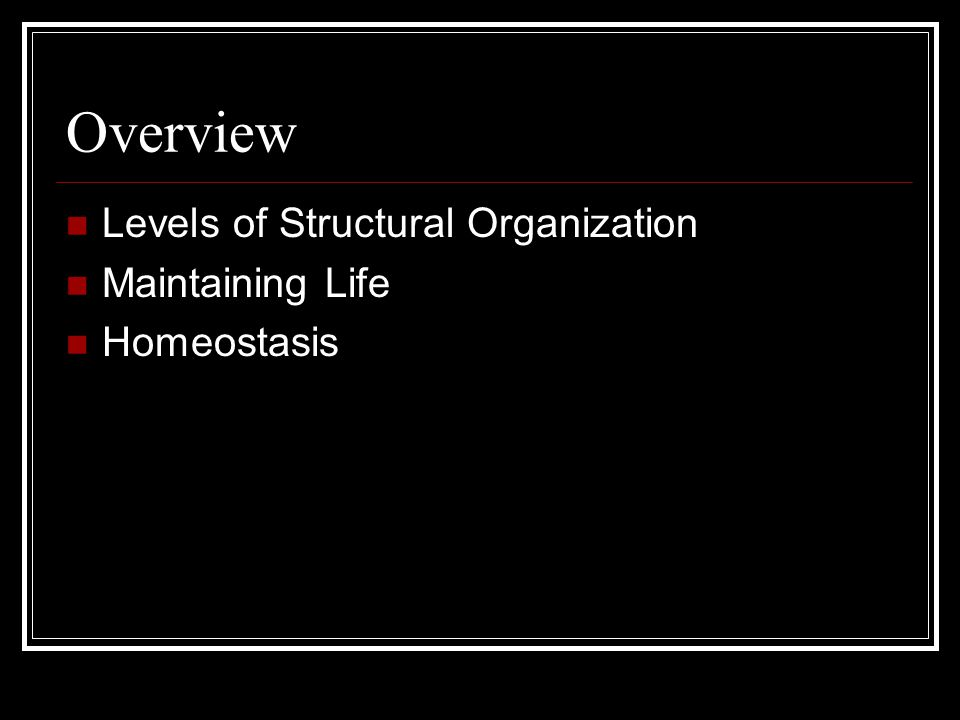 Overview Levels of Structural Organization Maintaining Life Homeostasis