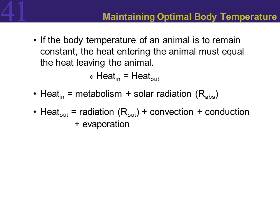 41 Maintaining Optimal Body Temperature If the body temperature of an animal is to remain constant, the heat entering the animal must equal the heat leaving the animal.