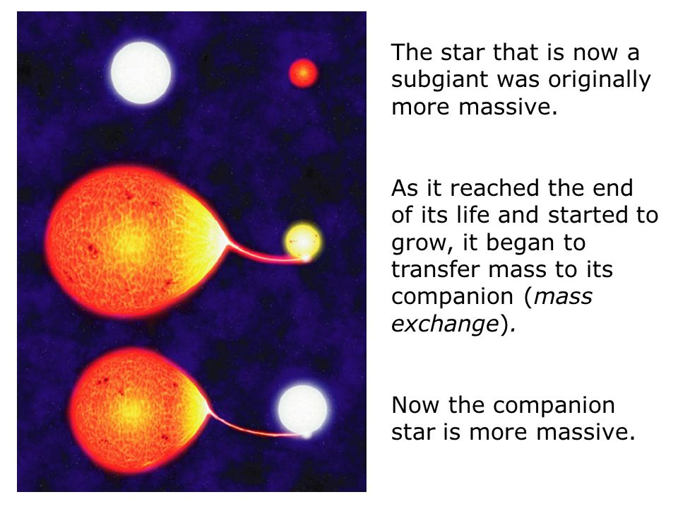 The star that is now a subgiant was originally more massive. As it reached the end of its life and started to grow, it began to transfer mass to its c
