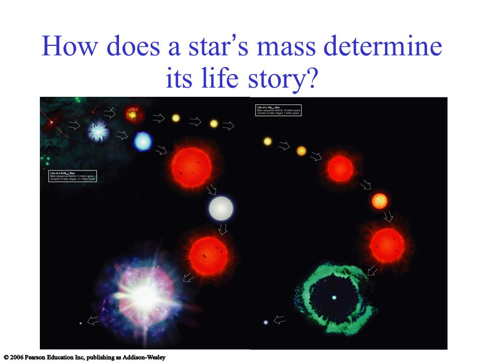 How does a star ' s mass determine its life story
