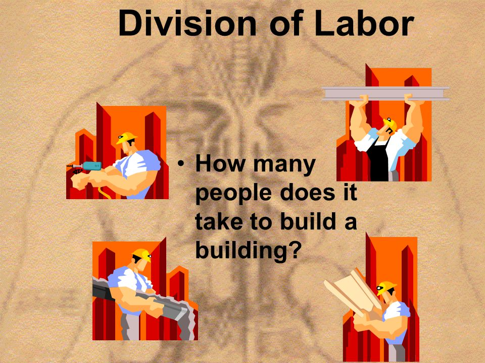 Division of Labor How many people does it take to build a building?