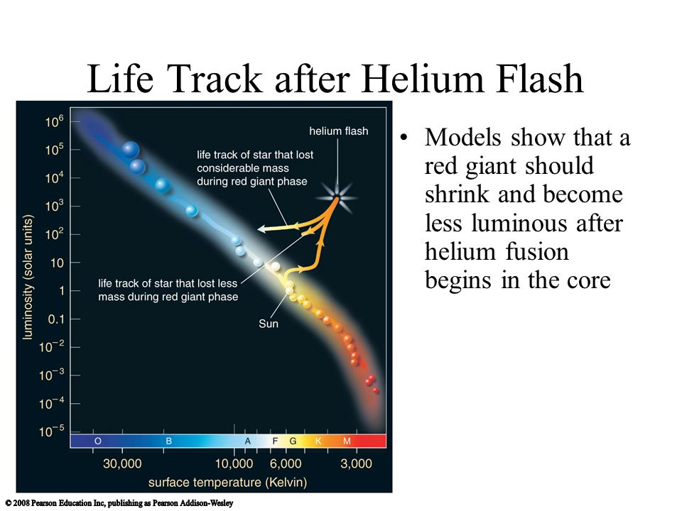Life Track after Helium Flash Models show that a red giant should shrink and become less luminous after helium fusion begins in the core